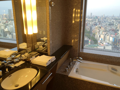 Tokyo_hotel-room2_2896-small