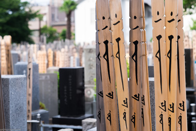 Wooden-sticks-at-Japanese-cemetery-small