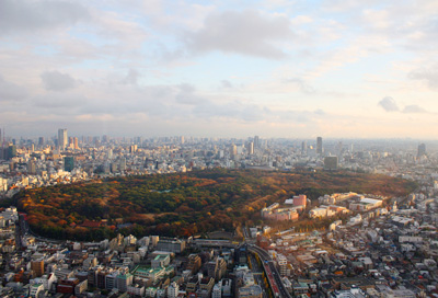 Yoyogi_Park_from_Hyatt-small