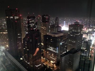 Tokyo_NYbar_view_3079-small