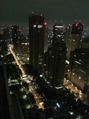 Tokyo_NYbar_view_3121-small