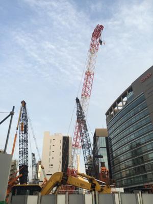 Tokyo_crane2_2892-small